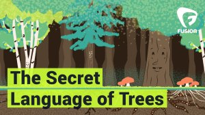 Secret_Lang_Trees