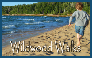 1-wildwoodwalks-mini