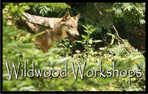 1-wildwoodworkshops-mini