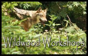 1-wildwoodworkshops-mini