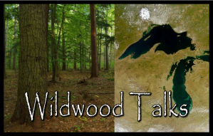 2-wildwoodtalks-mini
