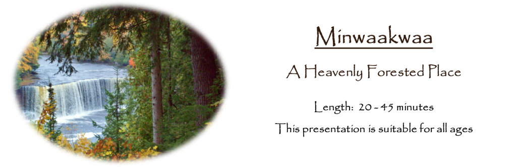 Minwaakwaa: A Heavenly Forested Place