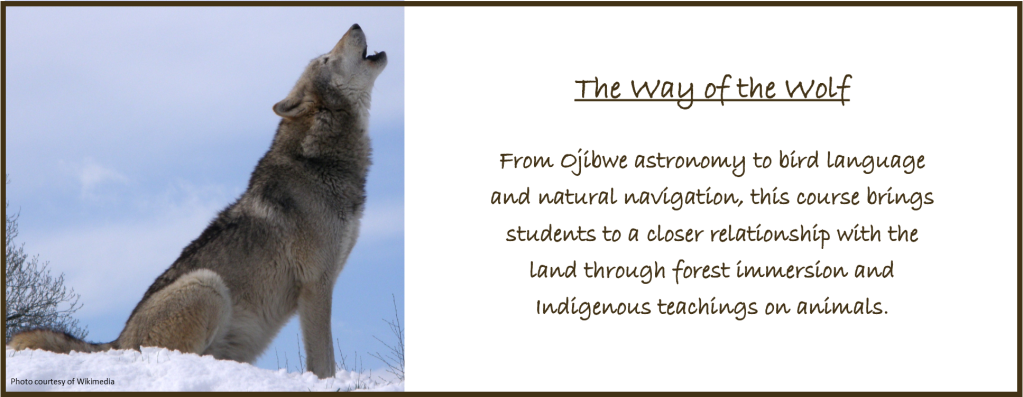 The Way of the Wolf
