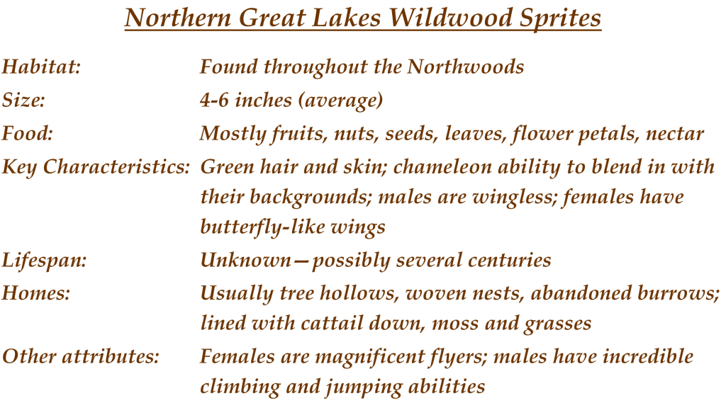Wood Sprites Description