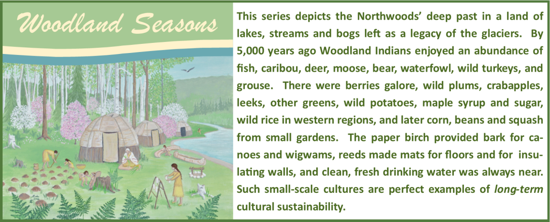 Woodland Seasons Series: This series depicts the Northwoods' deep past in a land of lakes, streams and bogs left as a legacy of the glaciers.  By 5,000 years ago Woodland Indians enjoyed an abundance of fish, caribou, deer, moose, bear, waterfowl, wild turkeys, and grouse.  There were berries galore, wild plums, crabapples, leeks, other greens, wild potatoes, maple syrup and sugar, wild rice in western regions, and later corn, beans and squash from small gardens.  The paper birch provided bark for canoes and wigwams, reeds made mats for floors and for  insulating walls, and clean, fresh drinking water was always near.  Such small-scale cultures are perfect examples of long-term cultural sustainability.